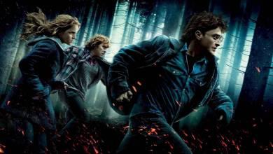 A nagy mágus maraton: Harry Potter és a Halál Ereklyéi: I. Rész – Kritika