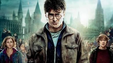 A nagy mágus maraton: Harry Potter és a Halál Ereklyéi: II. Rész – Kritika