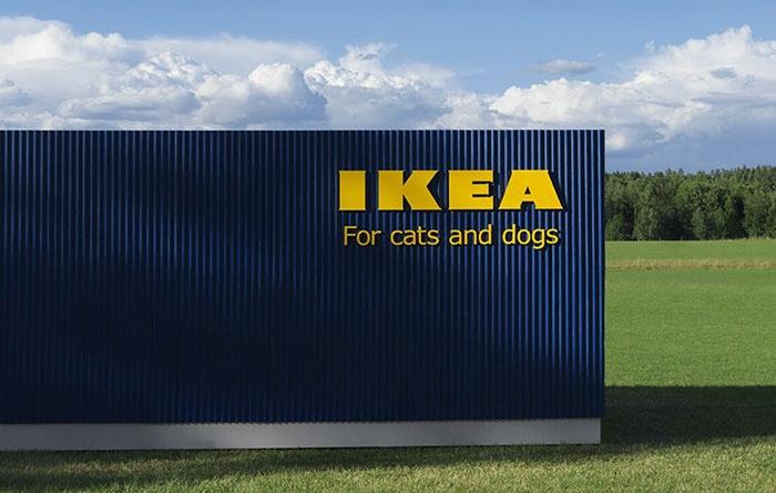 Állatbútorokat kezd gyártani az IKEA