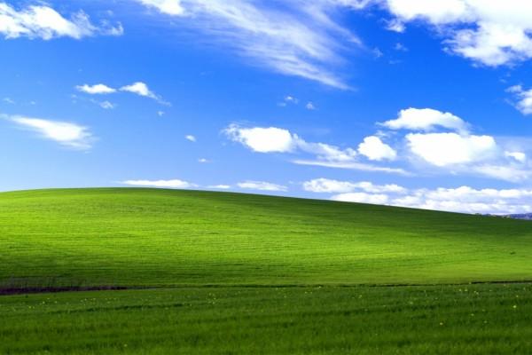 20 éve készült a Windows XP ikonikus háttérképe
