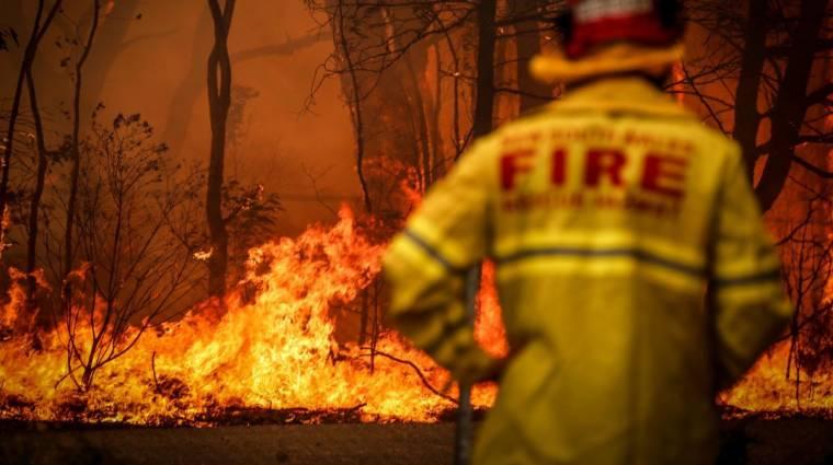 A legújabb Humble Bundle bevételei az ausztráliai tűzvész elleni harcban segítenek bevezetőkép