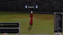 Shadowbane - még mindig él! kép