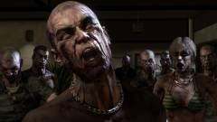 Jöhet a Dead Island 3 is? kép