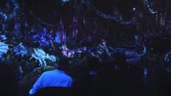 A Disney Avatar témájú parkot épít kép