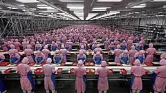 Mégis inkább embereket dolgoztatna a Foxconn kép