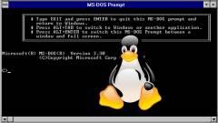 Egy unatkozó fejlesztő összerakta a Linux DOS-os alrendszerét kép
