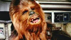 Chewbacca angolul beszélt a Star Wars filmek forgatása alatt kép