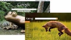 Bingesedik a Google kép
