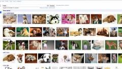 Hogyan tesz tönkre egy embert a Google automatikus kiegészítése? kép