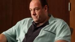 Milliókat fizetett az HBO azért, hogy James Gandolfini ne szerepeljen a The Office-ban kép
