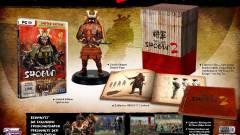 Total War: Shogun 2 - Béndzsa Nindzsa  kép