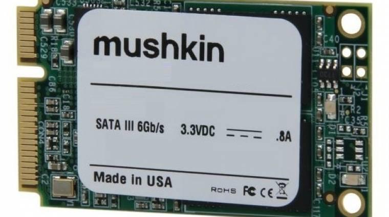 480 GB tárhely egy mSATA SSD-n kép