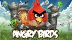Facebook-ra megy az Angry Birds kép