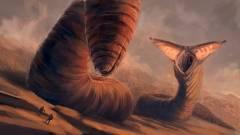 Megérkezett az első kép az új Dűne mozi Paul Atreideséről kép