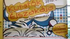 KUTATÓK ÉJSZAKÁJA 2010 - Less a dolgok mögé! kép