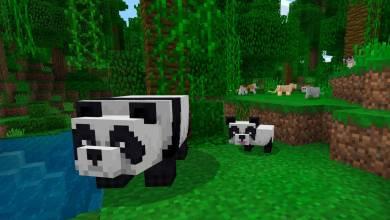 Minecraft – cukibb cicák és pandamacik az 1.8.0-s frissítésben