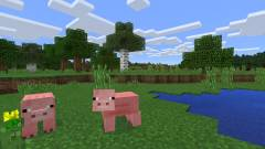 Azt gondolod, hogy csak gyerekek játszanak a Minecrafttal? Tévedsz! kép