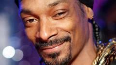 Snoop Dogg legújabb albuma egy játék borítóját másolta kép
