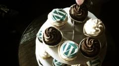 Megjelent a WordPress-suli kép