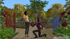 The Sims 2: Mansion & Garden Stuff kép