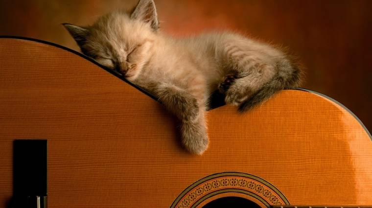 Jó Éjt! 2011. 10. 05. bevezetőkép