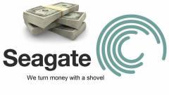 A Seagate az SSD-iparba invesztál a HDD-krízisből nyert pénzén kép
