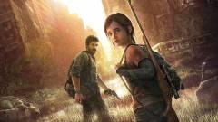 Az egyik legsikeresebb magyar rendezőnő szívesen dolgozna a The Last of Us sorozaton, és tesz is ezért kép