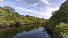 Ismerd meg az amazonasi őserdőt a Google Street View segítségével kép