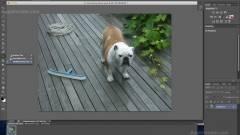 Ingyenesen letölthető a Photoshop CS6 béta kép