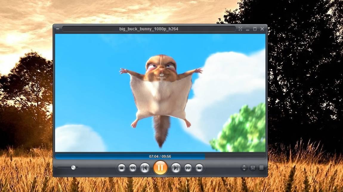 Inmatrix Zoom Player Pro kép