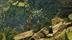 Uncharted klón a láthatáron - Adventurer kép