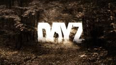DayZ - miért nem halad a fejlesztés? kép