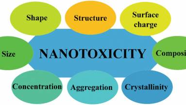 Így halmozódnak fel a mesterséges nanoanyagok a környezetben kép