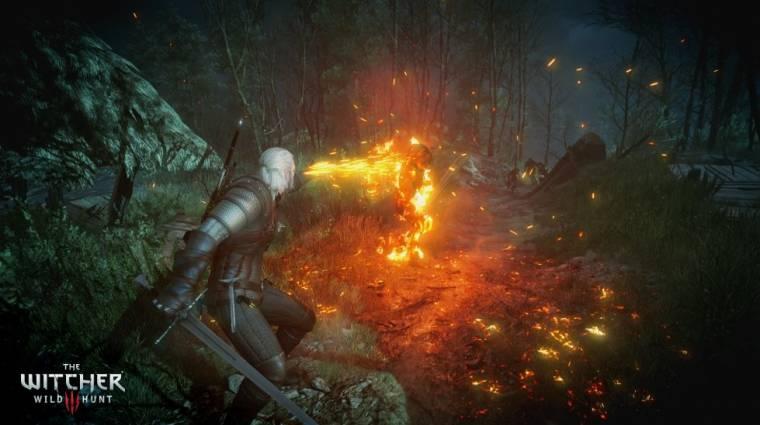 The Witcher 3: Wild Hunt - már az első nap javulni fog a teljesítmény bevezetőkép
