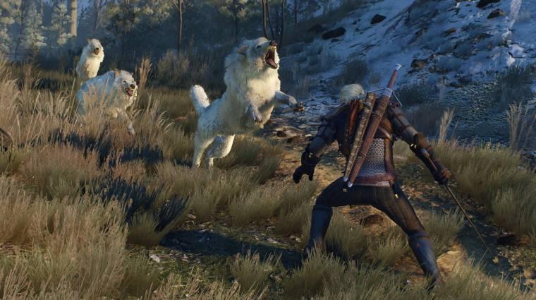 The Witcher 3: Wild Hunt - videón a szörnyek bevezetőkép