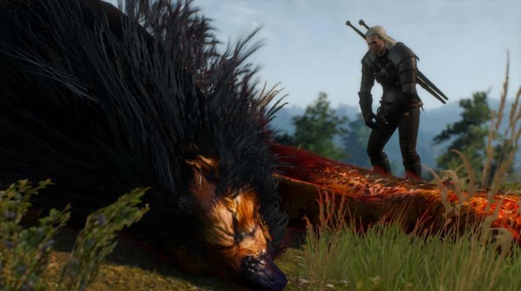 The Witcher 3: Wild Hunt - Geralt eléggé patches figura bevezetőkép