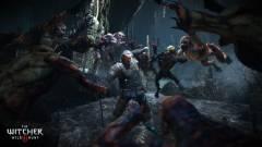 Ez a mod Dark Soulst varázsol a The Witcher 3-ból kép