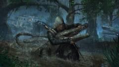 Assassin's Creed IV: Black Flag - miért késik a PC-s verzió? kép