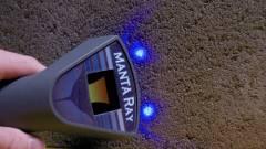 Minden mobilt megtalál a Manta Ray kép