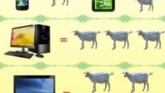 Négy birkát ér Kínában egy laptop kép