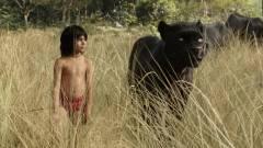A dzsungel könyve - itt az élőszereplős film első előzetese kép
