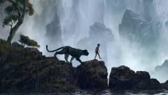 A dzsungel könyve kritika - Amíg van egy-két jó falat kép