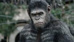 Új A majmok bolygója film készül kép