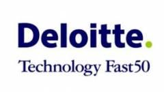 Kilenc magyar a Deloitte listáján kép