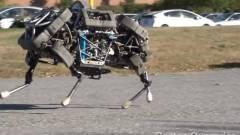 Újabb robotgyártót vett a Google kép