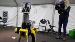Robotkutyák vizsgálják a koronavírusos betegeket kép