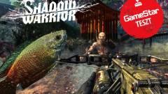 Shadow Warrior teszt - szamuráj-Rambo kalandjai kép