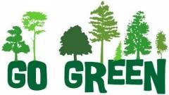 Az első 100%-ban Zöld vállalkozás az IT szférában kép
