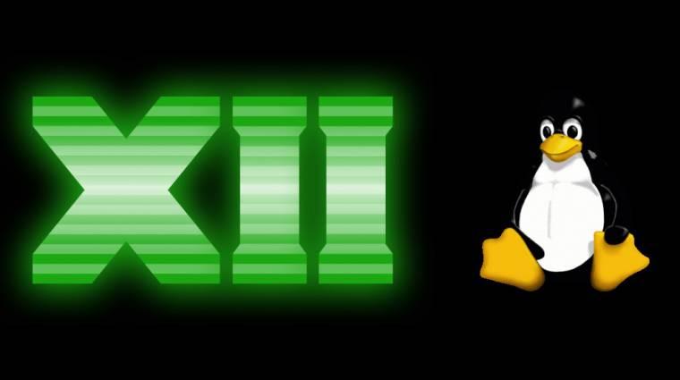 Jön a DirectX a Linuxra - vagy valami olyasmi kép