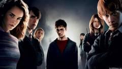 A nagy mágus maraton: Harry Potter és a Főnix Rendje – Kritika kép